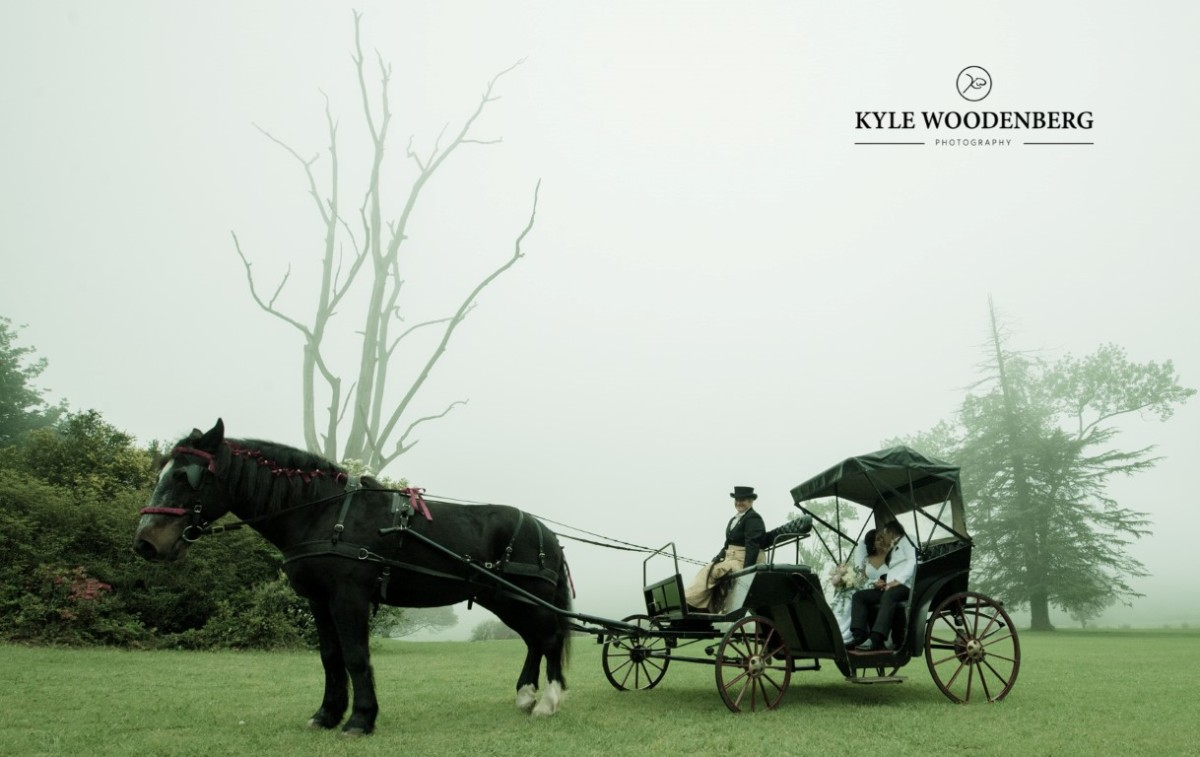 Lythwood Weddings - Horse Drawn Carriage